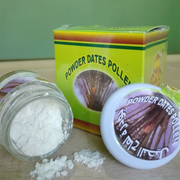 jual powder dates pollen