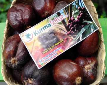 buah zuriat madinah 1 kg