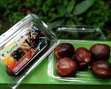 buah zuriat madinah 250 gr