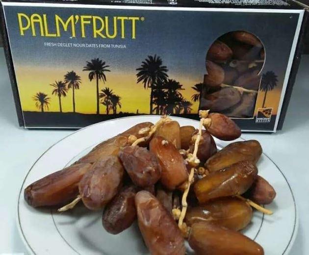 Harga Kurma Palm Fruit