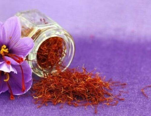Beberapa Aturan dan Cara Konsumsi Saffron dengan Benar